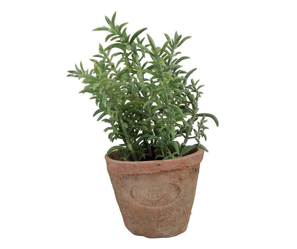 Umjetna biljka u posudi Thyme