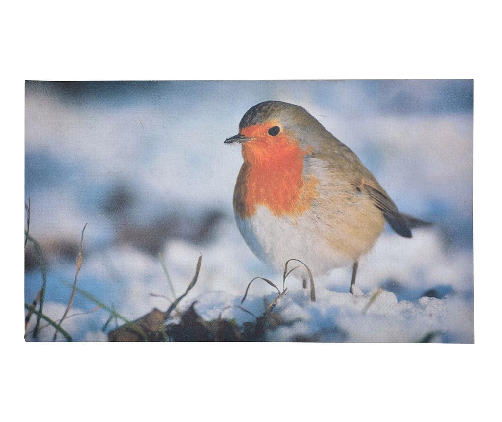 Predpražnik Little Bird 45x76.2 cm