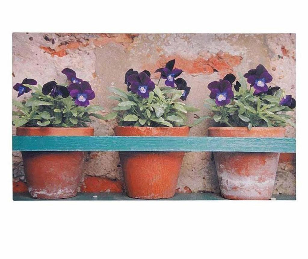 Covoras de intrare Flower Pots 45x75 cm