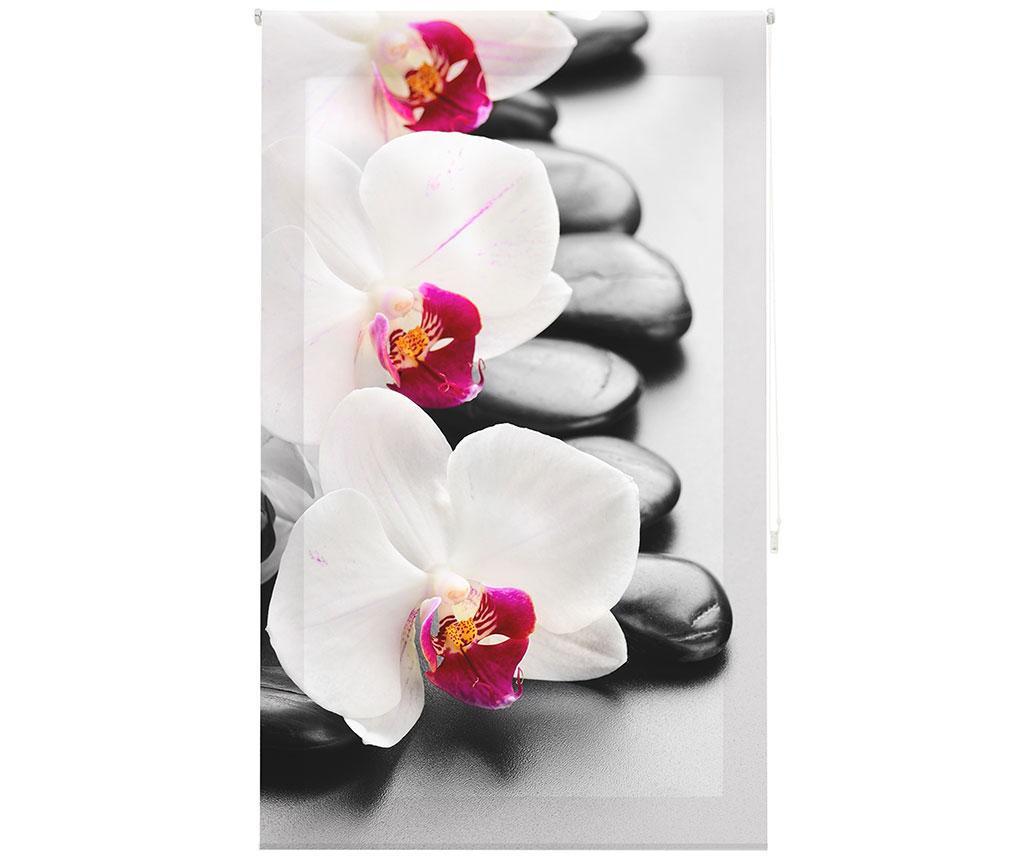 Jaluzea tip rulou Orchid 160x250 cm