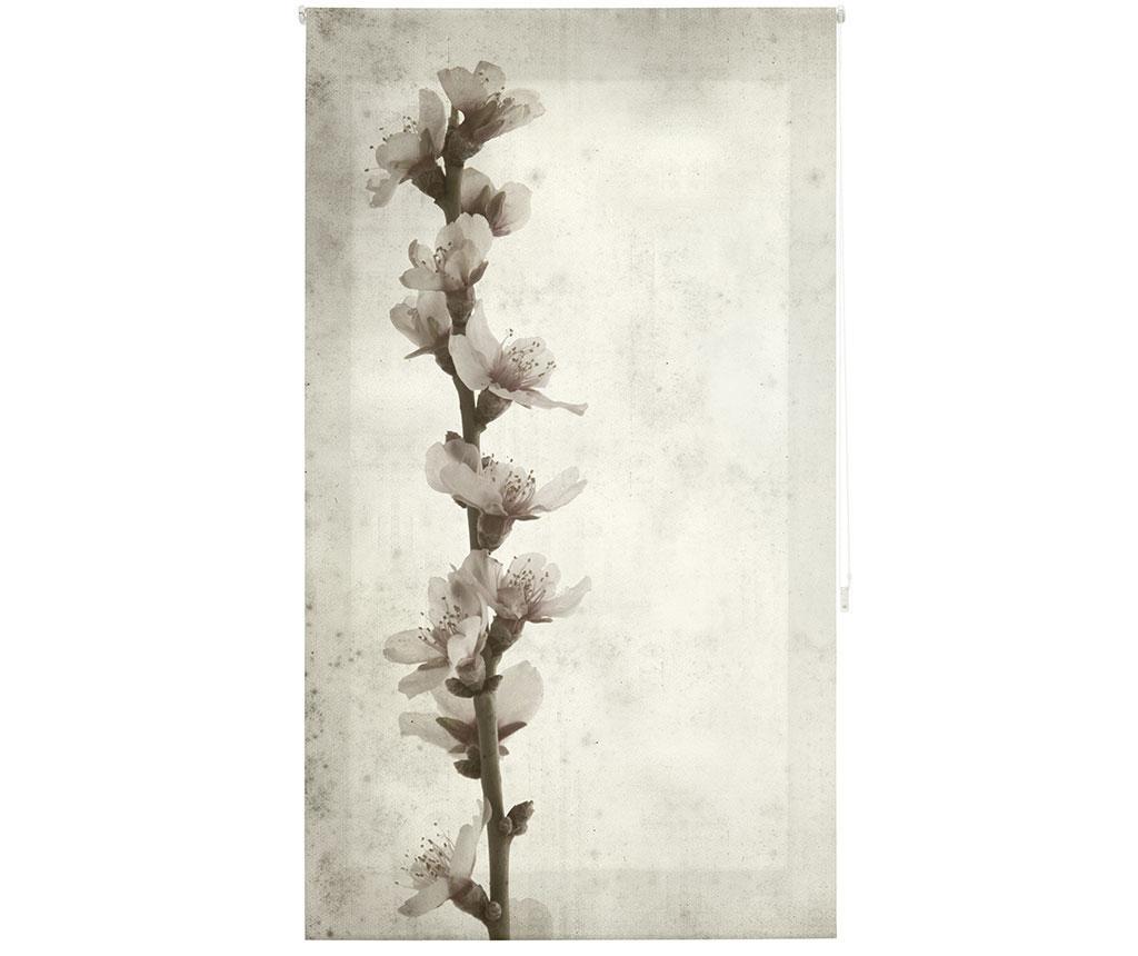Jaluzea tip rulou Growth 140x250 cm