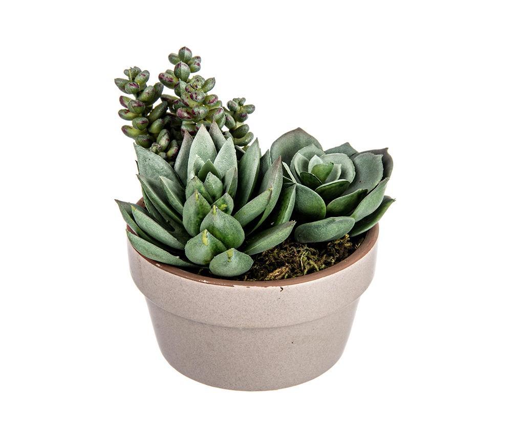 Planta artificiala in ghiveci Nevada Succulent