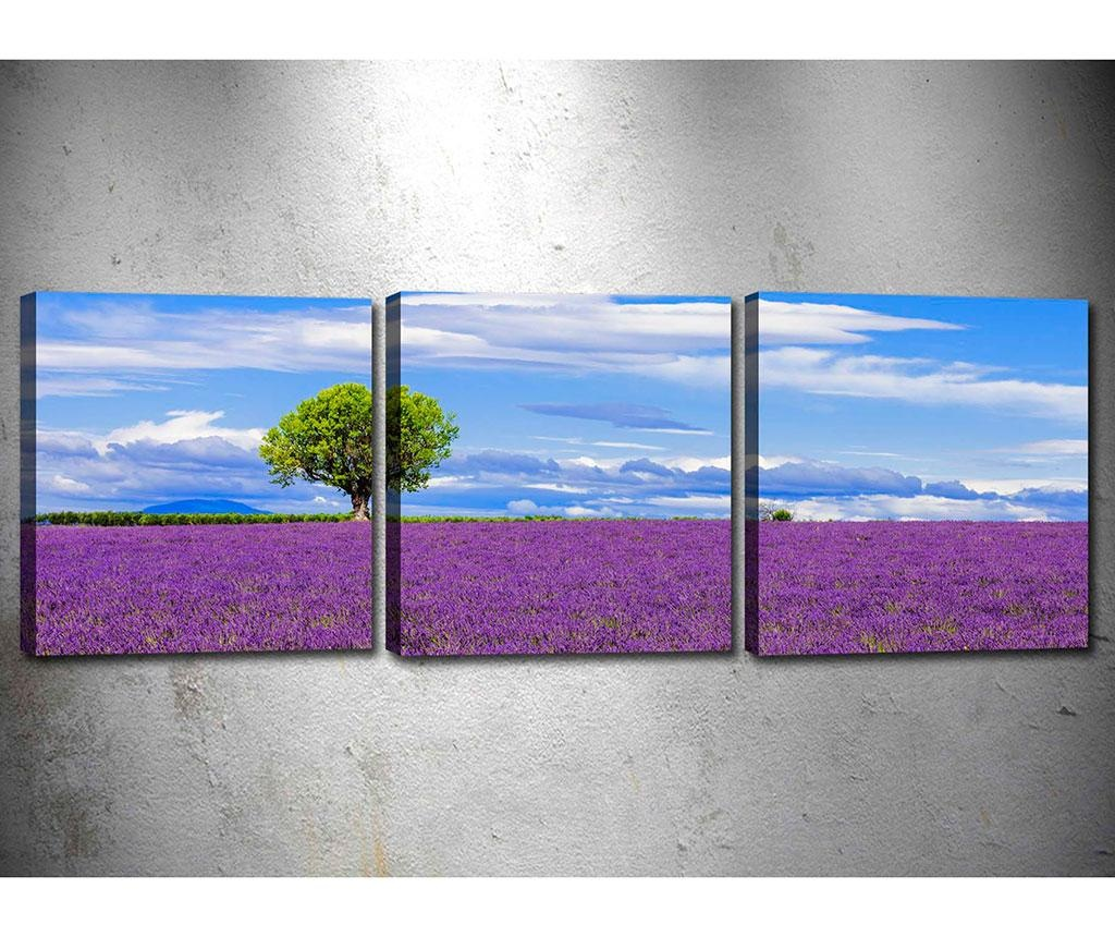 Set 3 slike Lavender Field 30x30 cm