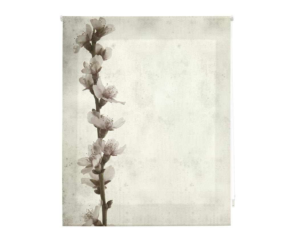 Jaluzea tip rulou Growth 180x250 cm