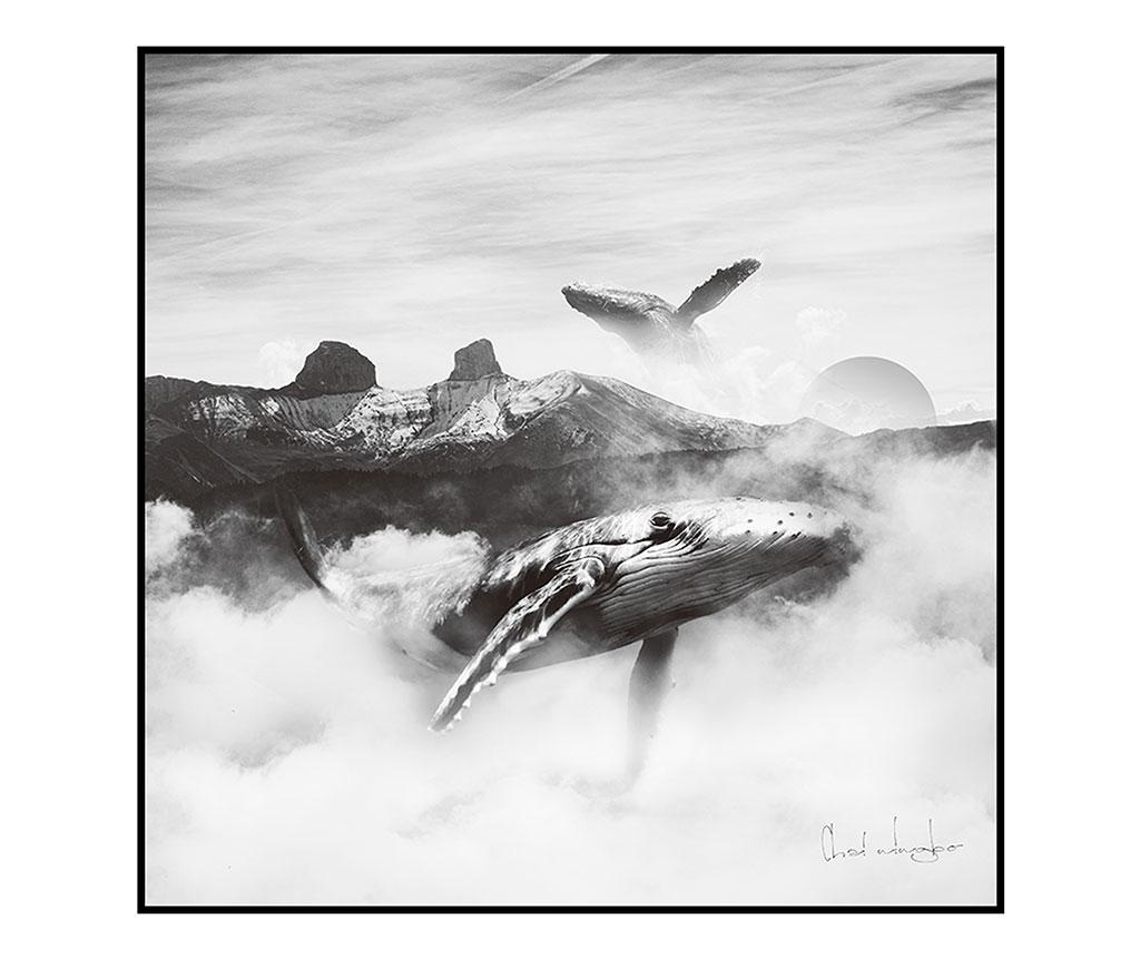 Tablou Black and White Whales 80x80 cm