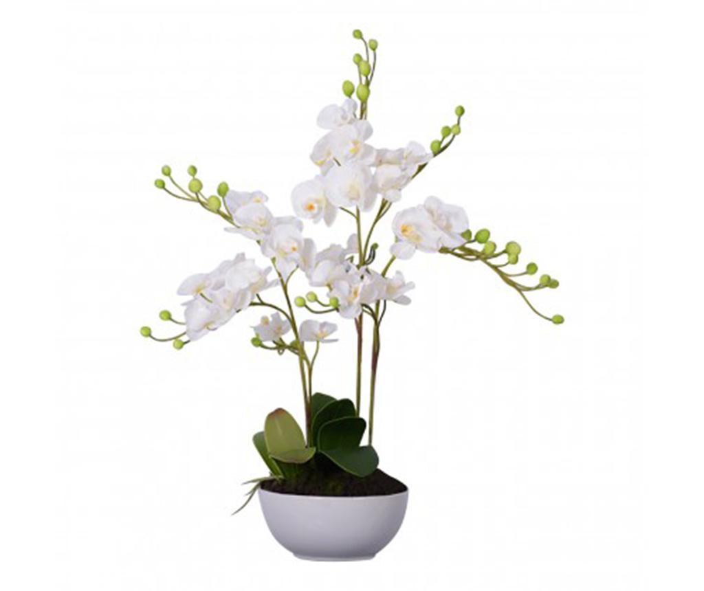 Fiori White Orchid Művirág virágcserépben