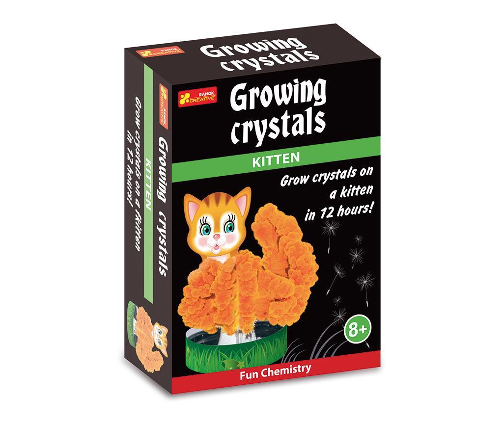 Joc educativ Kitten