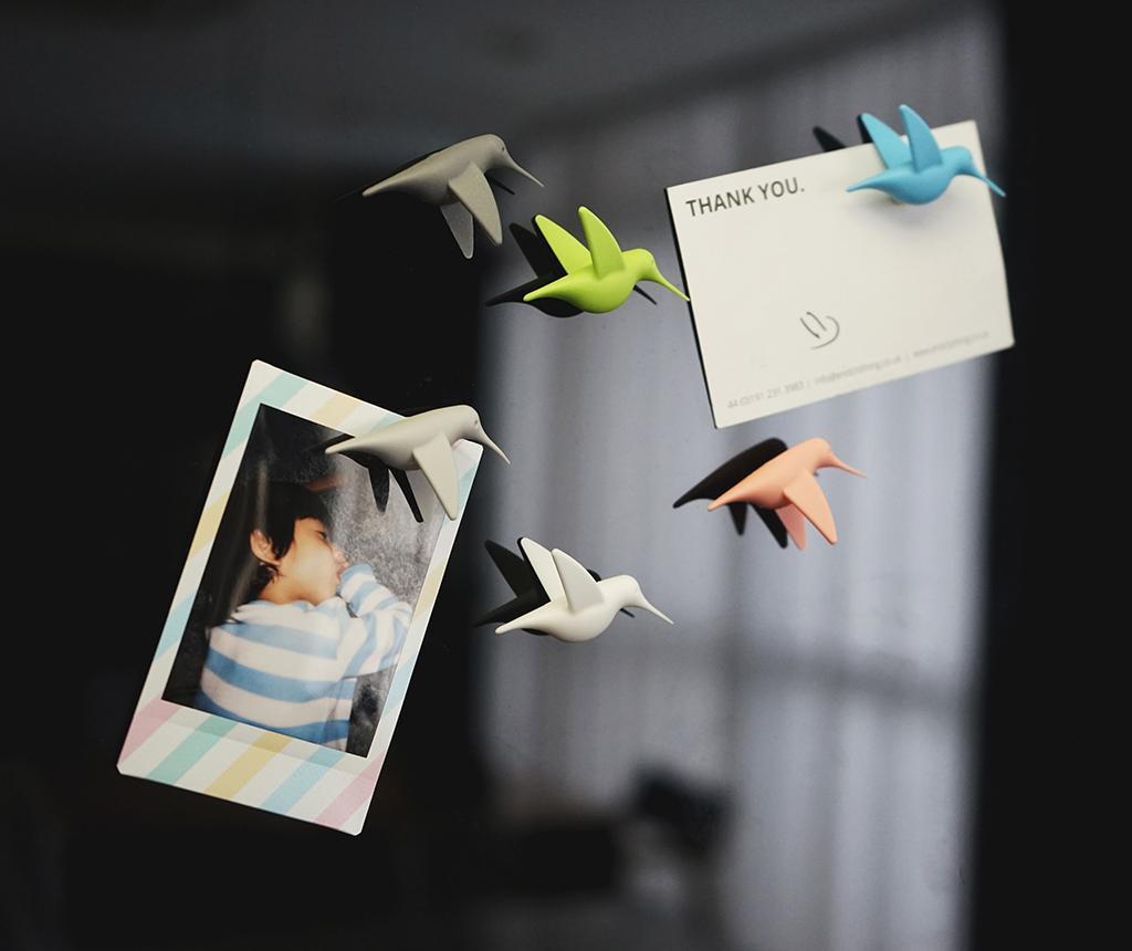 Humming Bird Pastel 6 db Mágnes