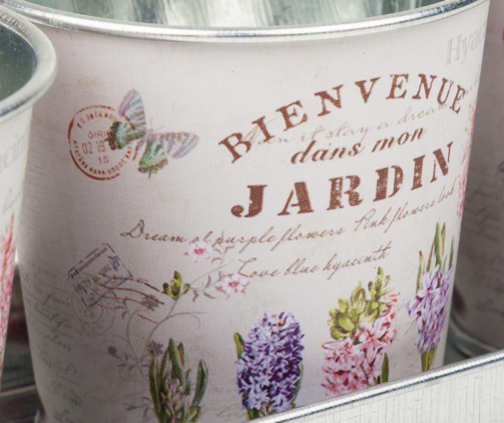 Set 3 ghivece si tava Hyacinth