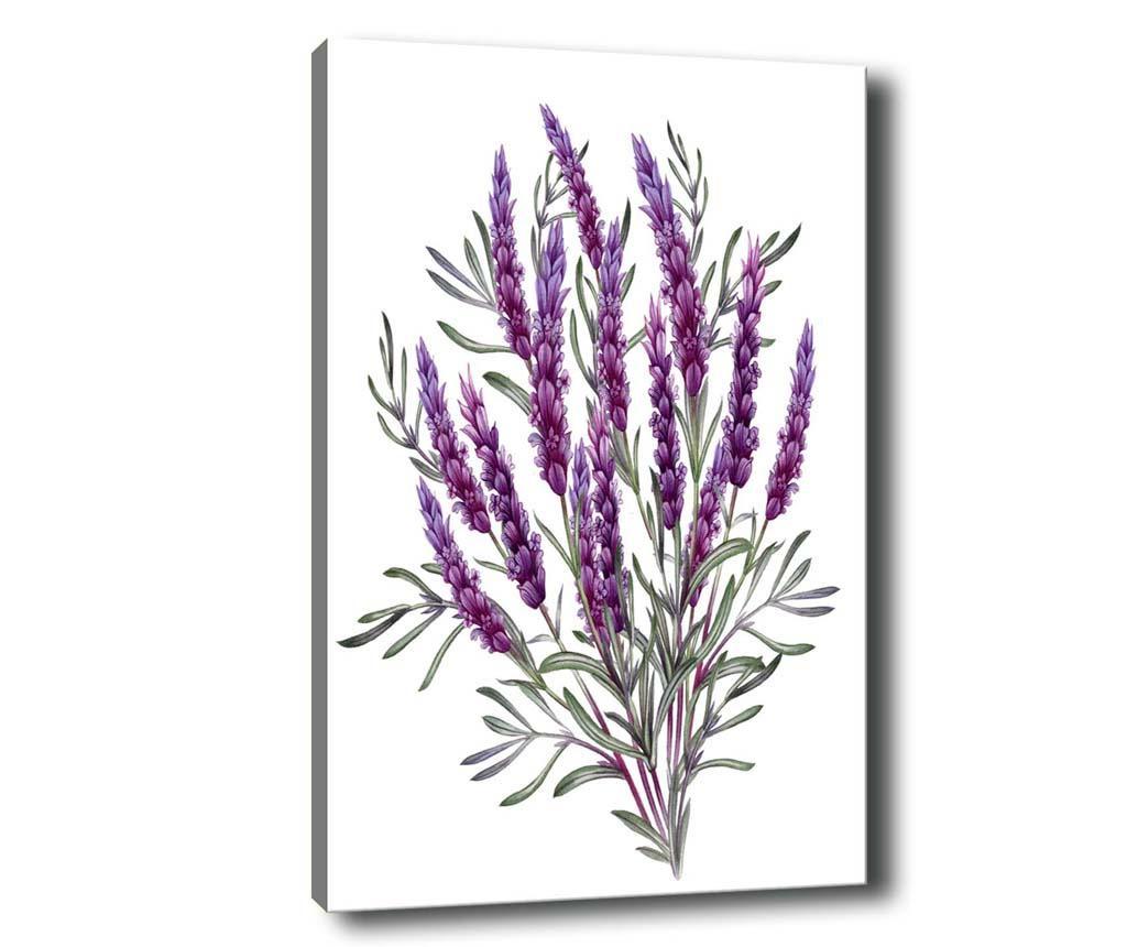Tablou Lavender 70x100 cm