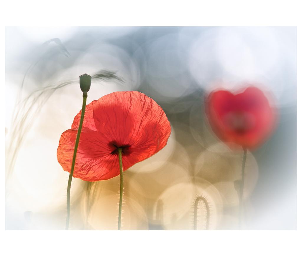 Slika Morning Poppies 60x90 cm