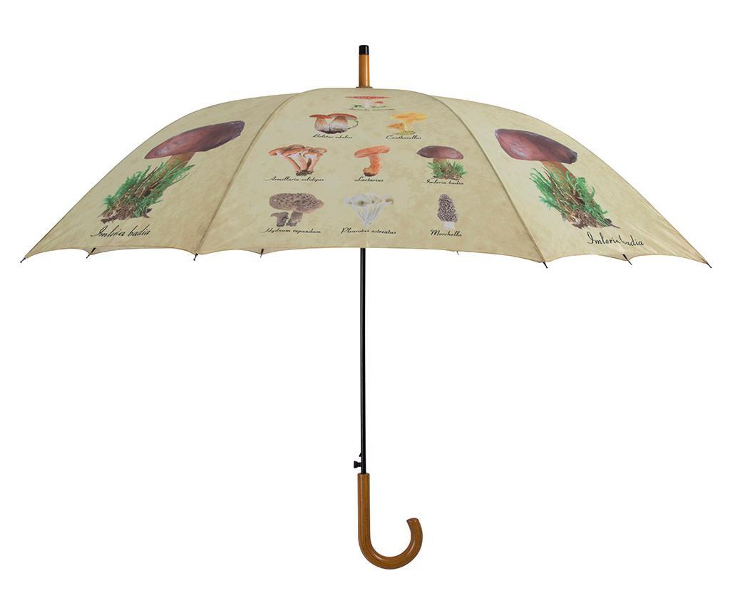 Parasolka Mushrooms