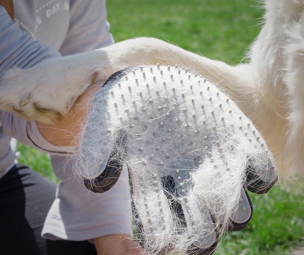 Rukavice-kartáček pro zvířátka InnovaGoods Pets