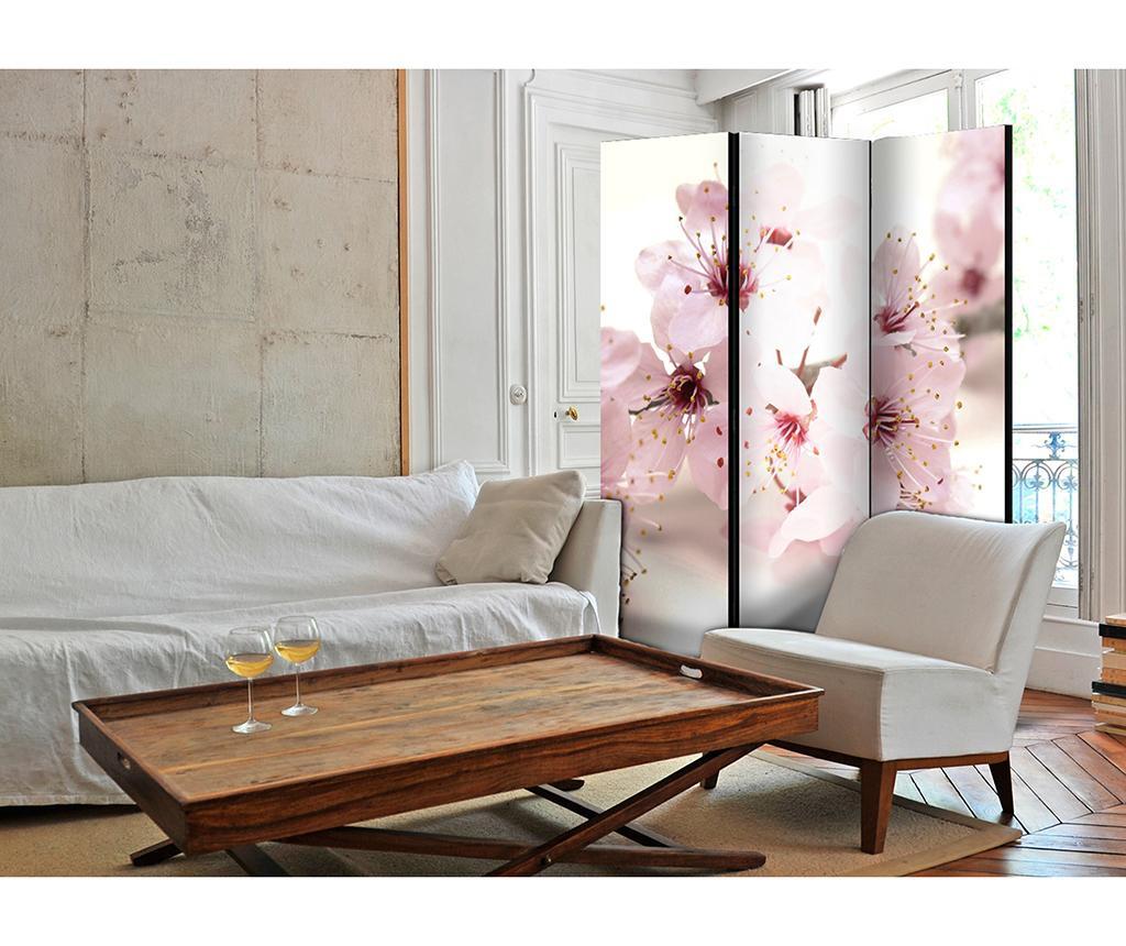 Španielska stena Cherry Blossom