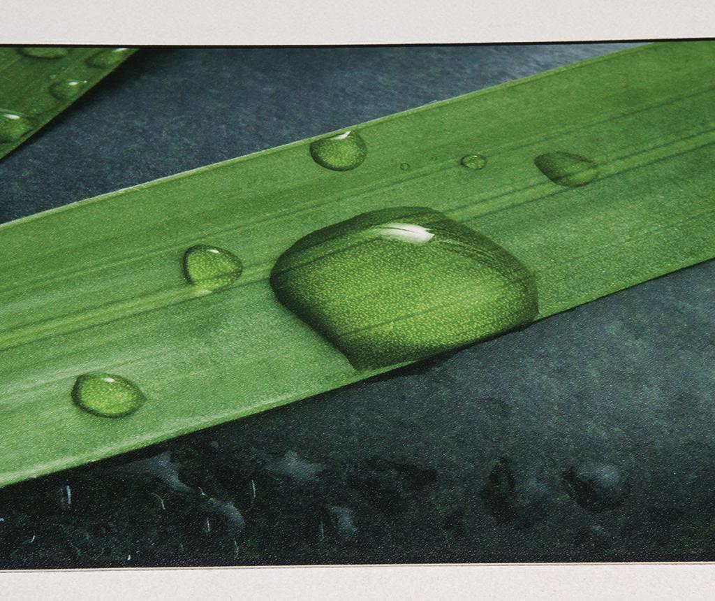 Vinyl Zen Linóleum 50x120 cm