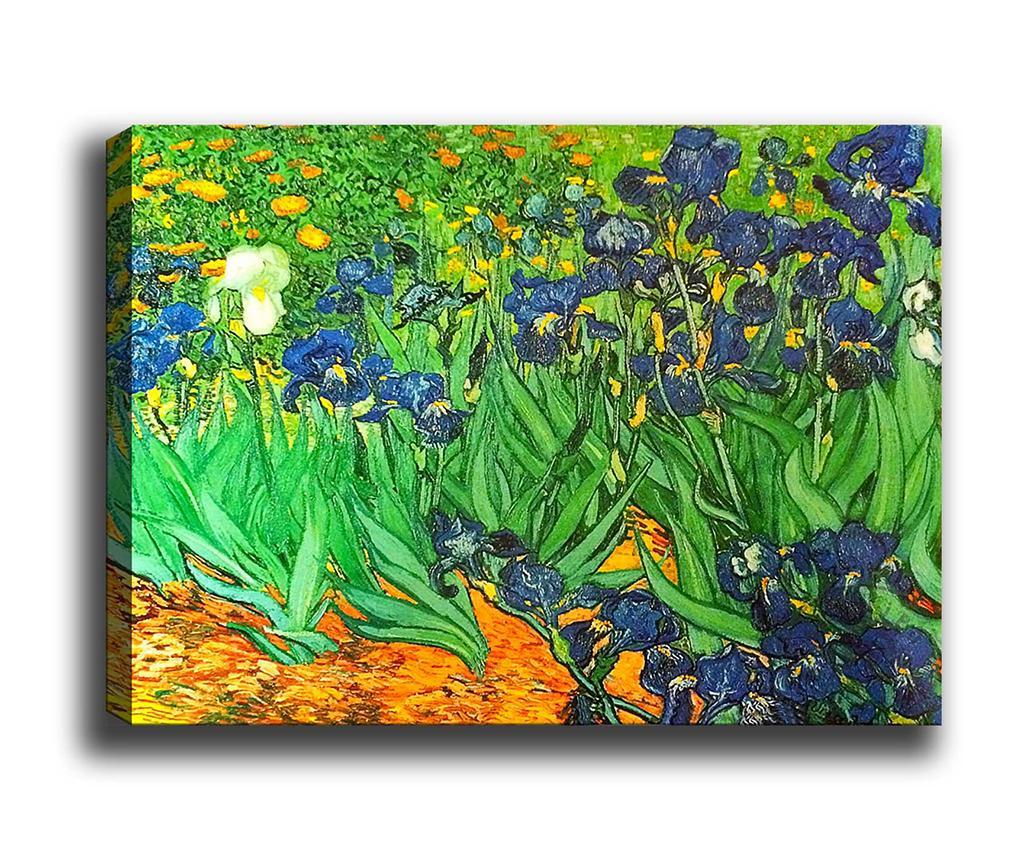 Tablou Irises Garden 50x70 cm