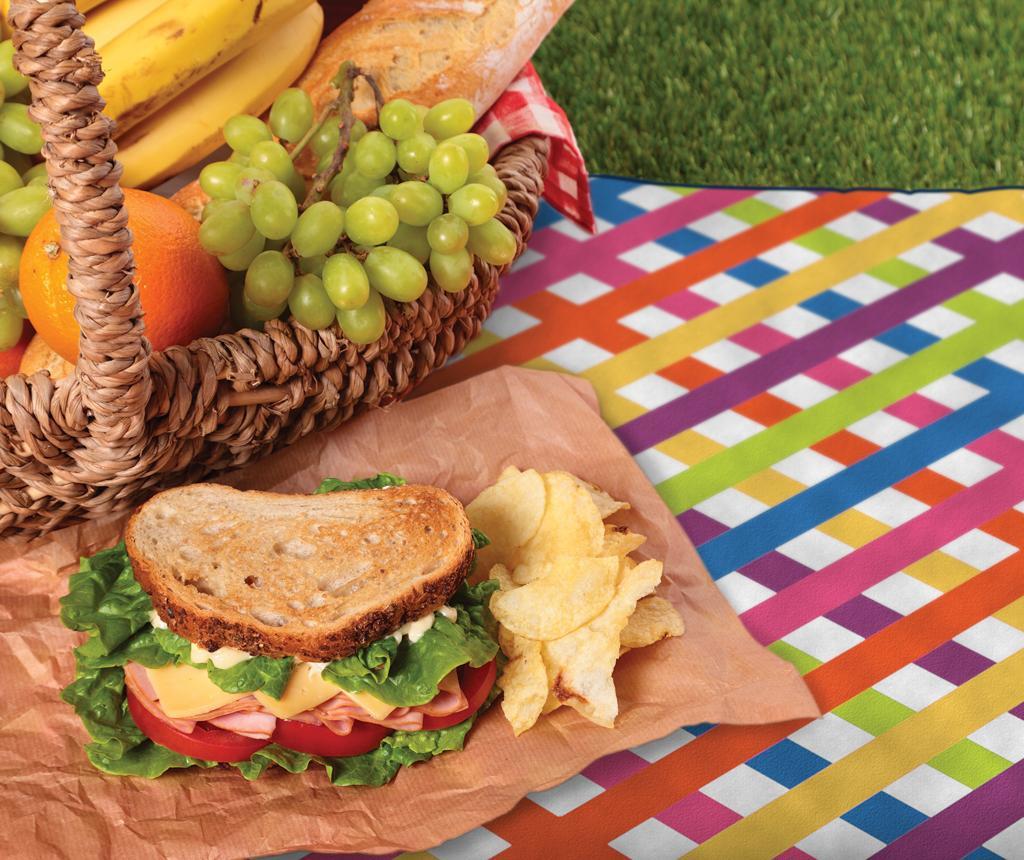 Odeja za piknik Multi Check 127x152 cm
