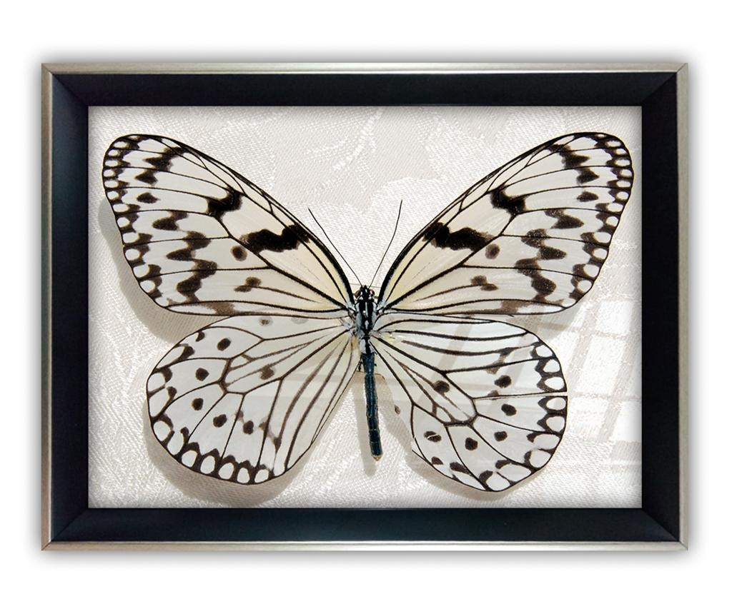 Tablou Big Butterfly 45x65 cm