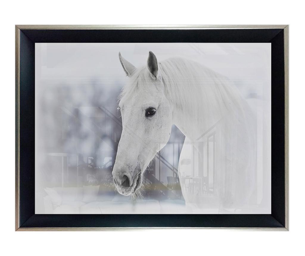 Tablou White Horse 45x65 cm