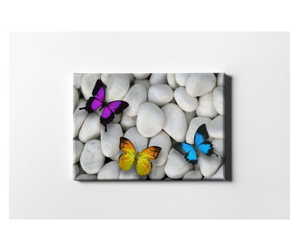 Tablou White Stones And Butterflies 40x60 cm