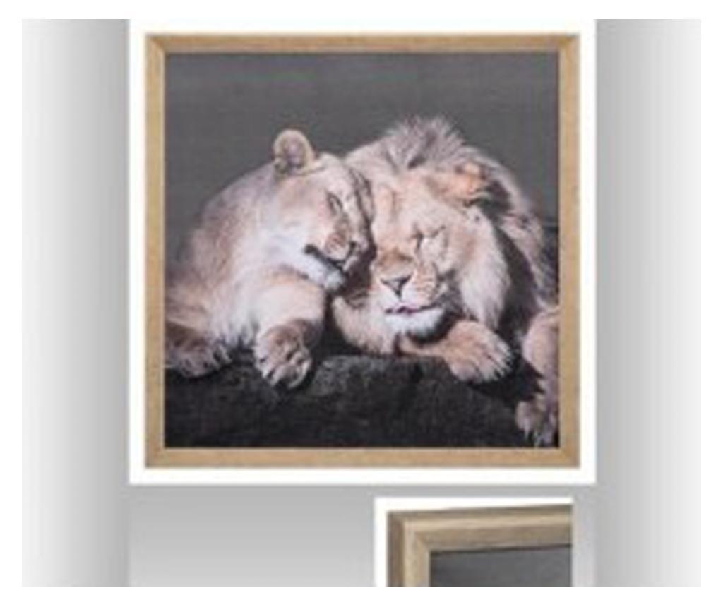 Tablou canvas Lions, 58x58 cm