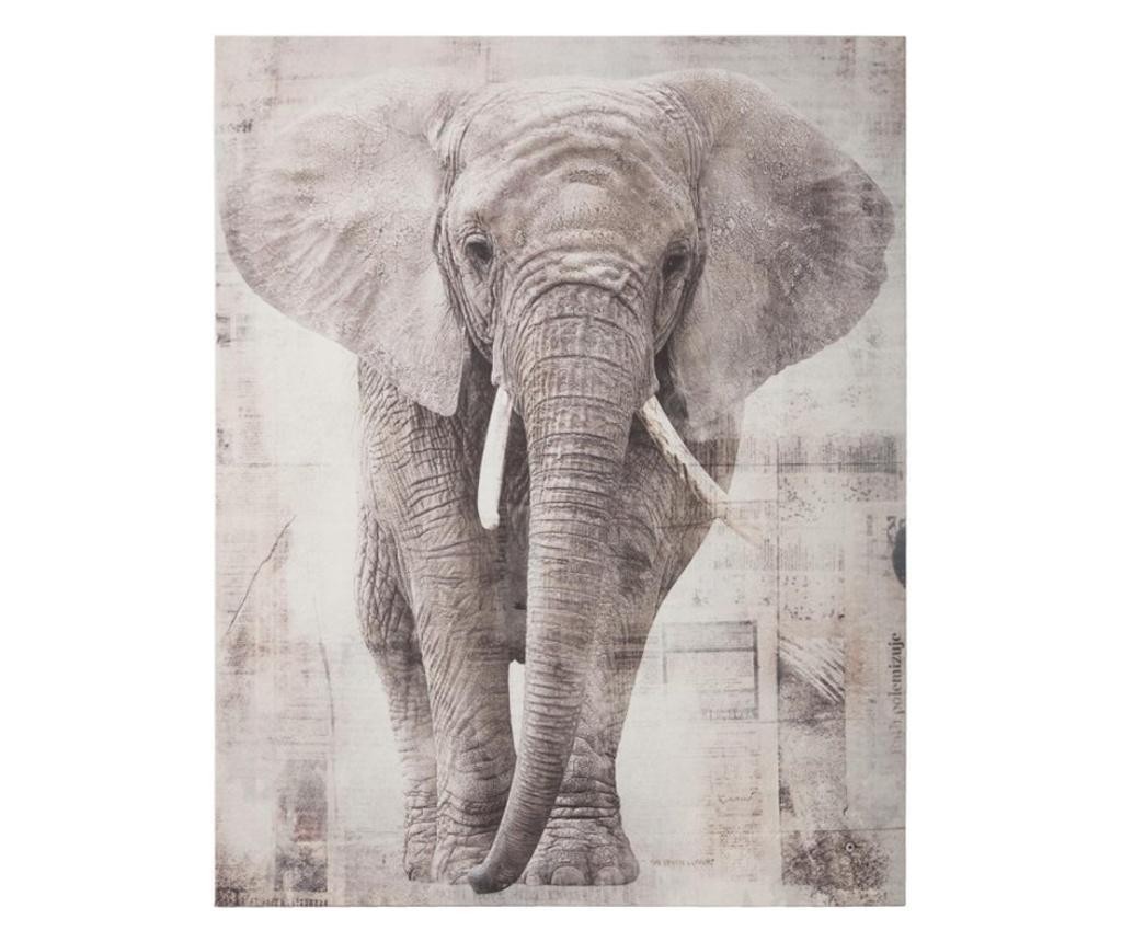 Tablou canvas Elefant, 38x48 cm