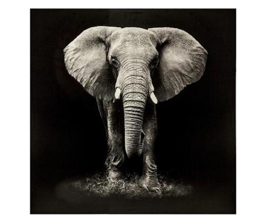 Tablou canvas Elefant Black, 100x100 cm