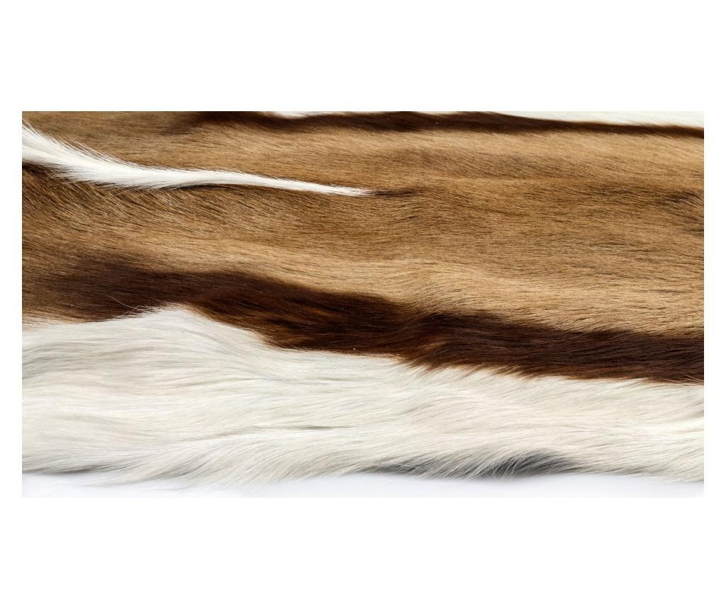Dywan ze skóry zwierzęcej Springbok 90x50